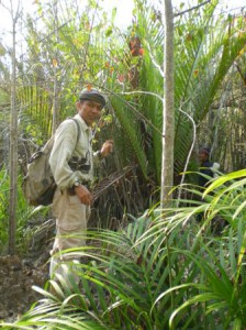 Jungle trekking on Koh Ra